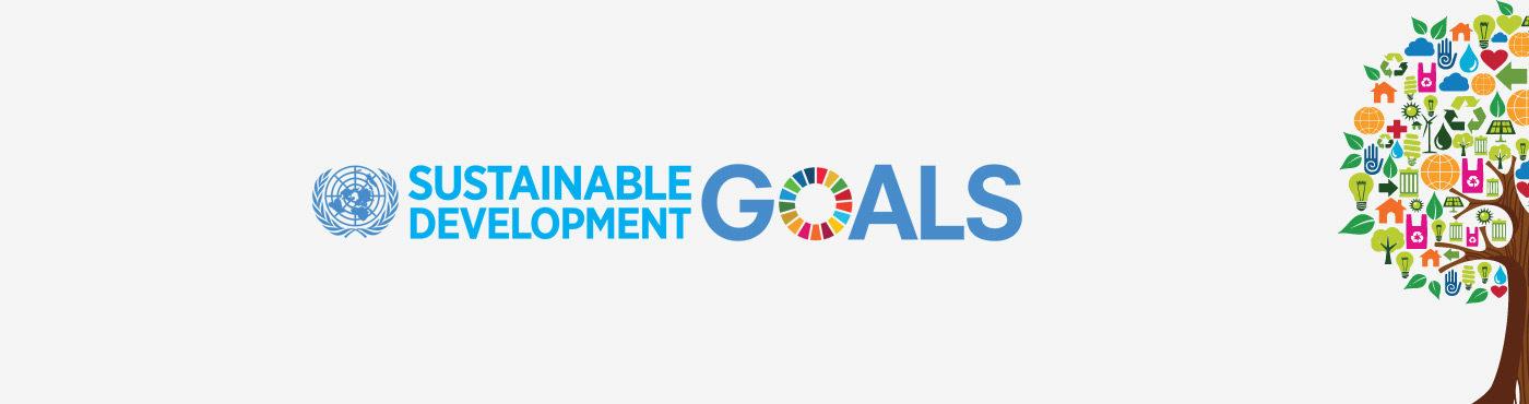 SDG Leaders Sponsorship Programme